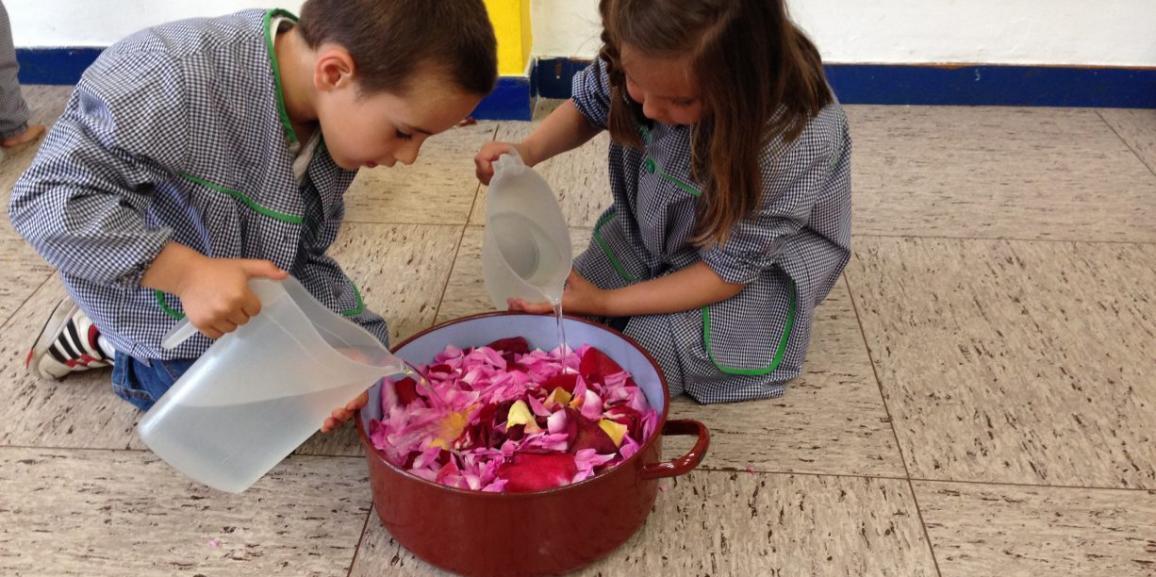 Hicimos agua de rosas